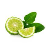 Bergamot Fruit Oil