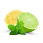 Lemon and Lime Oils